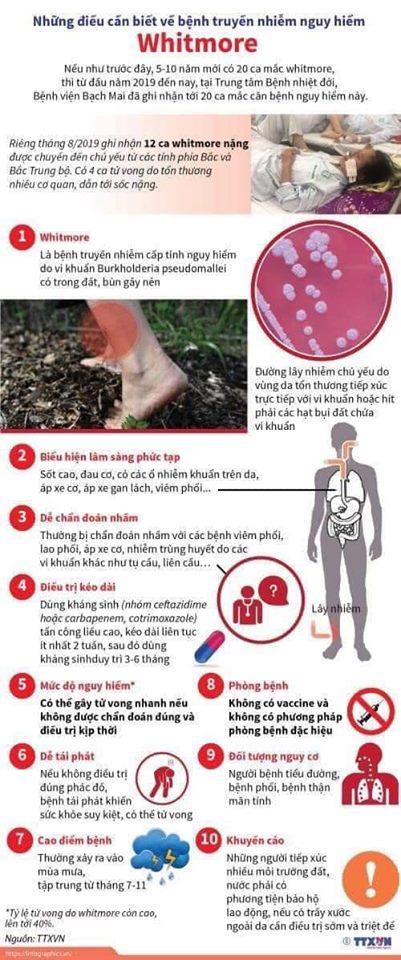Bệnh Whitmore - vi khuẩn ăn thịt người.jpg